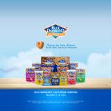 Bluedimond_home_product01_2